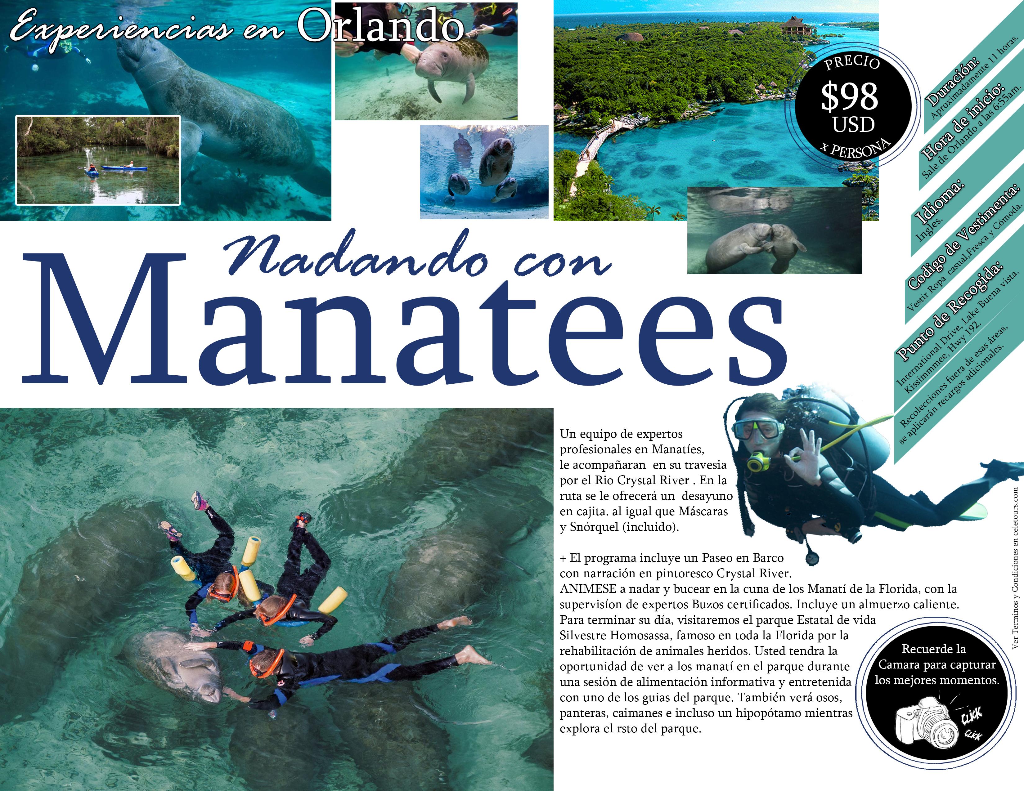 Programa - Nadando con Manaties
