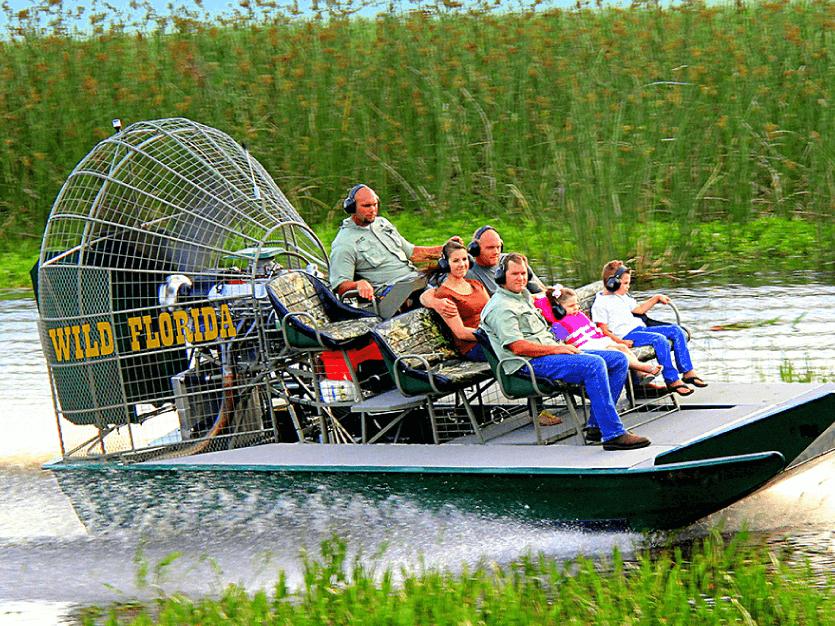 Avistamiento de Cocodrilos - Wild Florida