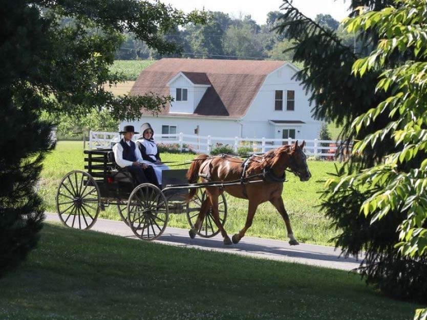 Territorio Amish
