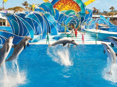 Show con Delfine - Parque Aquatica